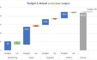 Presenting the income or P&L statement: Show Budget and variance walk of expense categories